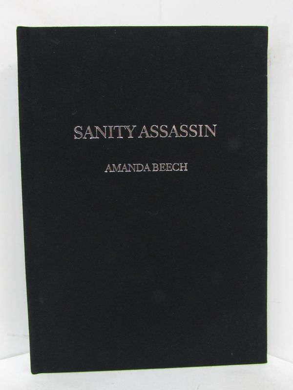 SANITY ASSASSIN;. Amanda Beech.